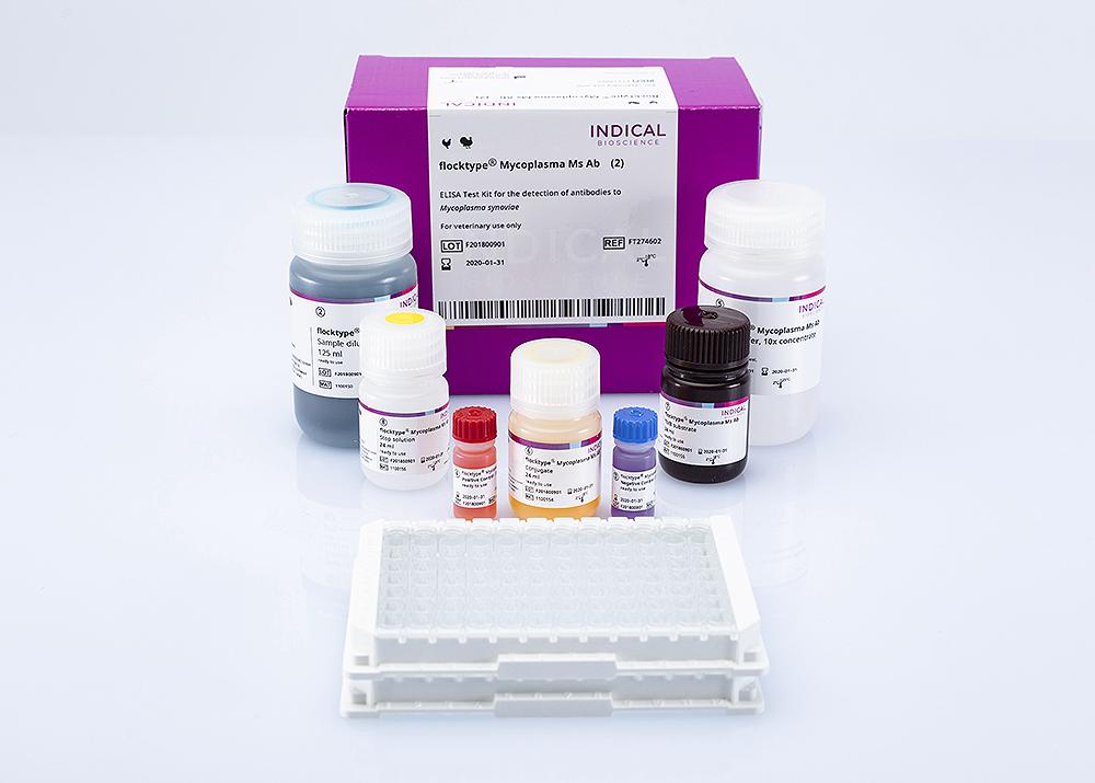 flocktype Mycoplasma Ms Ab (2 ELISA plates)