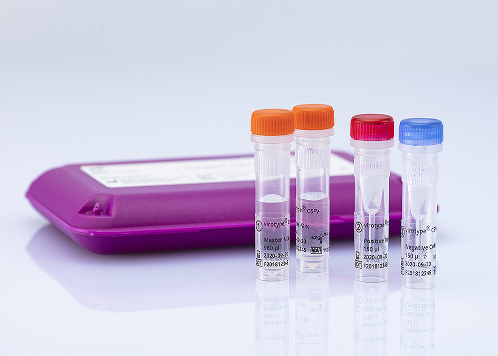 virotype CSFV RT-PCR Kit (96 reactions)