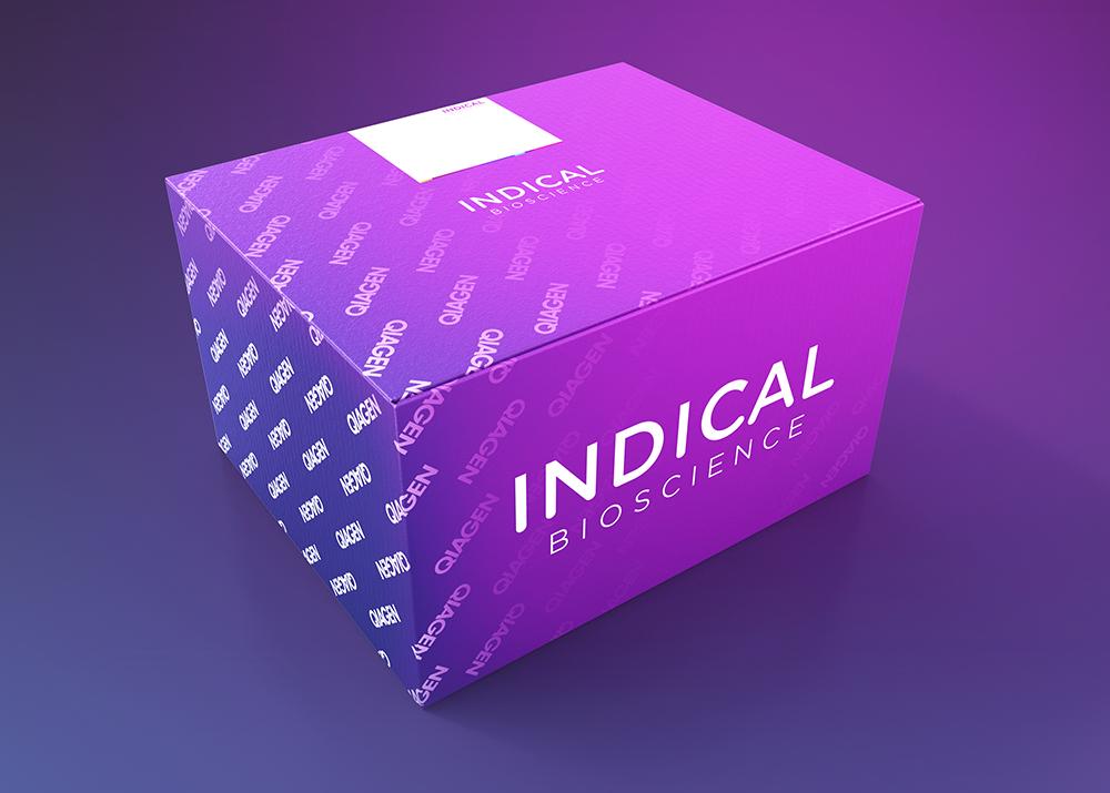 IndiMag Mastitis Kit (384 reactions)