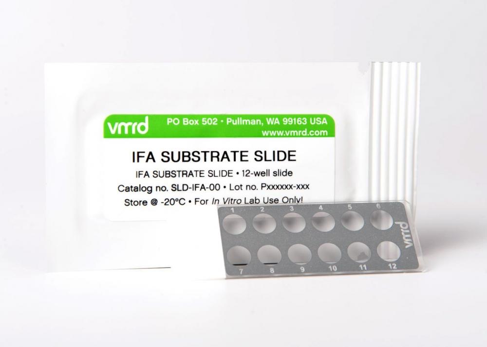 Rickettsia rickettsii (RMSF) FA Substrate Slide (12-well slide)