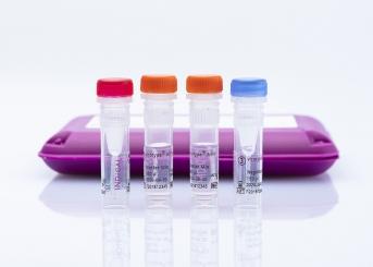 virotype ASFV PCR Kit (96 reactions)