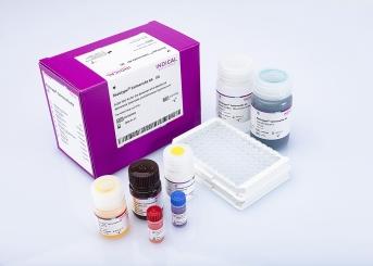 flocktype Salmonella Ab (2 ELISA plates)